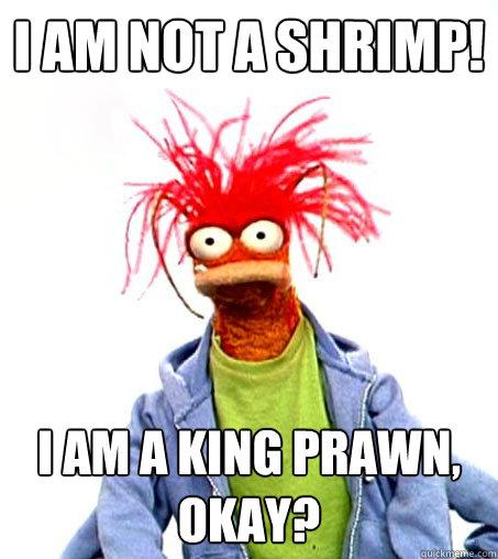 8ed87a24203129c53ec668ceb2251ad52ec538d4608121c8a0c628a48236bad5 pepe the king prawn memes quickmeme