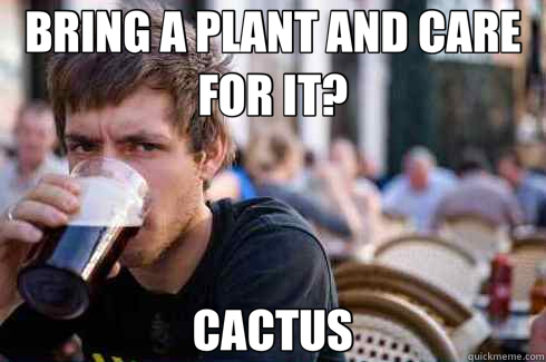 BRING A PLANT AND CARE FOR IT? CACTUS - BRING A PLANT AND CARE FOR IT? CACTUS  Lazy College Senior