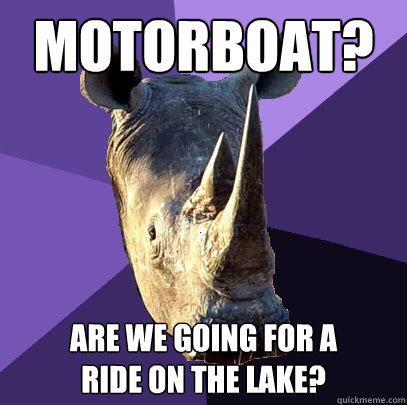 Motorboat? Are we going for a ride on the lake? - Motorboat? Are we going for a ride on the lake?  Sexually Oblivious Rhino