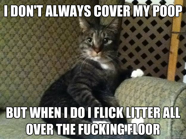 I Donu0027t Always Cover My Poop But When I Do I Flick Litter All Over The  Fucking Floor