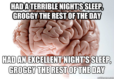 Had a terrible night's sleep, groggy the rest of the day had an excellent night's sleep, groggy the rest of the day - Had a terrible night's sleep, groggy the rest of the day had an excellent night's sleep, groggy the rest of the day  Scumbag Brain