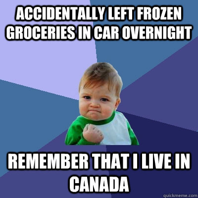 ACCIDENTALLY LEFT FROZEN GROCERIES IN CAR OVERNIGHT remember that i live in canada - ACCIDENTALLY LEFT FROZEN GROCERIES IN CAR OVERNIGHT remember that i live in canada  Success Kid