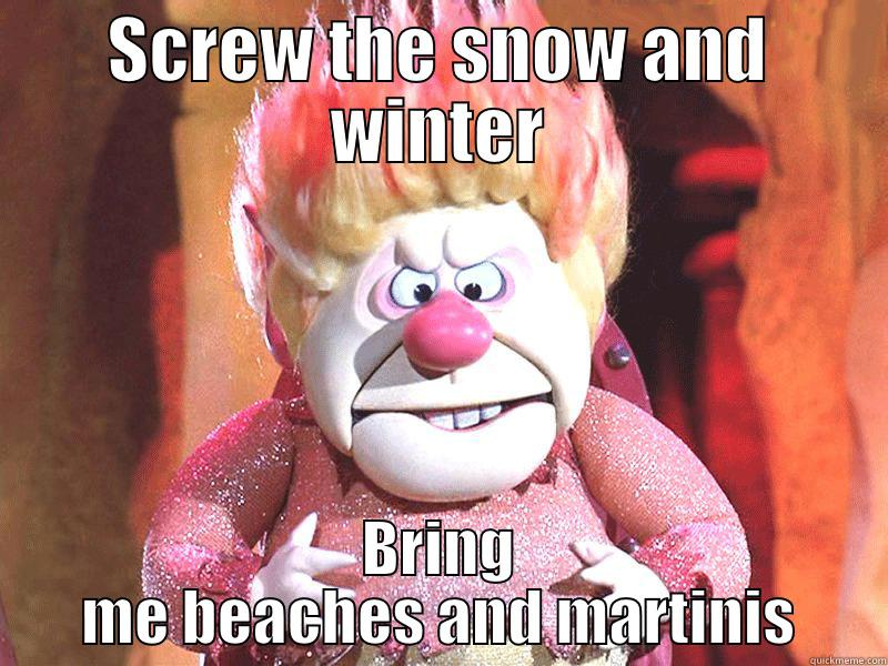 SCREW THE SNOW AND WINTER BRING ME BEACHES AND MARTINIS Misc