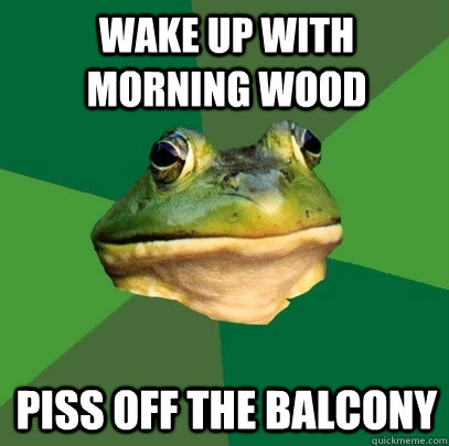 wake up with morning wood piss off the balcony - wake up with morning wood piss off the balcony  Foul Bachelor Frog