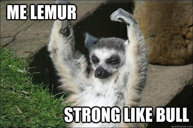 lemur memes quickmeme