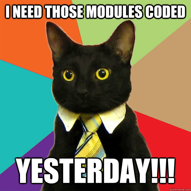 I need those modules coded YESTERDAY!!! - I need those modules coded YESTERDAY!!!  Business Cat