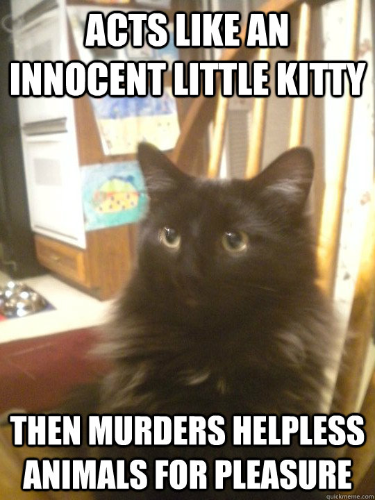 Acts like an innocent little kitty Then murders helpless animals for pleasure