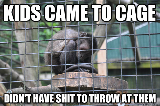 Kids came to Cage Didn't have shit to throw at them - Kids came to Cage Didn't have shit to throw at them  Melancholy Zoo Monkey