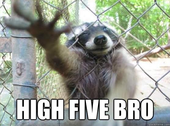 High five bro