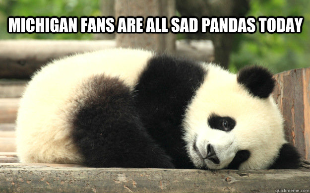 Michigan fans are all sad pandas today