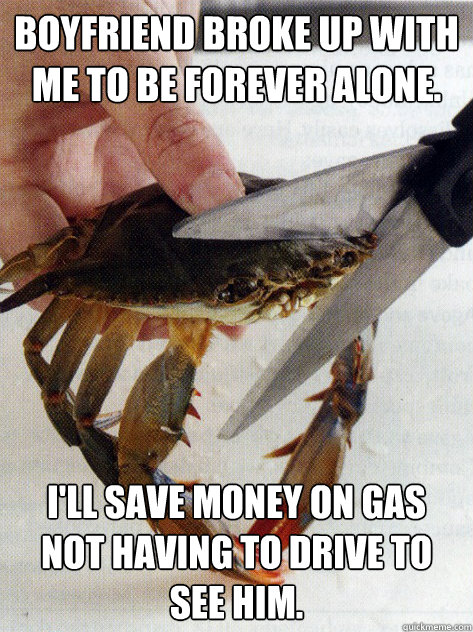 Boyfriend broke up with me to be forever alone. I'll save money on gas not having to drive to see him.  Optimistic Crab