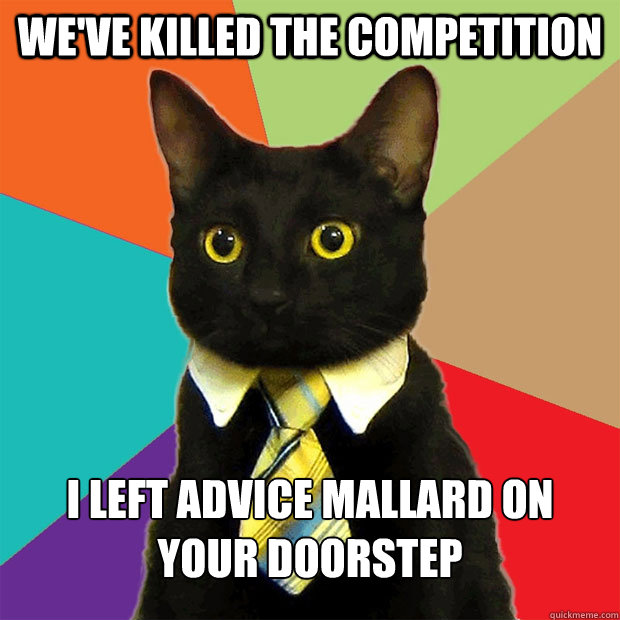 we've killed the competition i left advice mallard on your doorstep - we've killed the competition i left advice mallard on your doorstep  Business Cat
