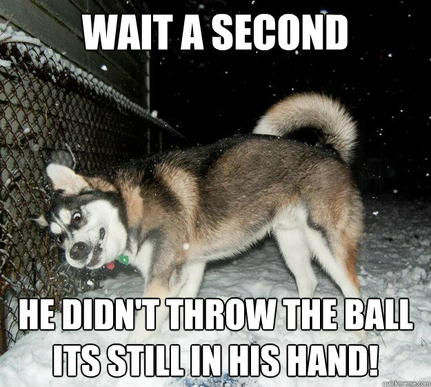 wait a second He didn't throw the ball its still in his hand! - wait a second He didn't throw the ball its still in his hand!  Sudden Clarity Canine