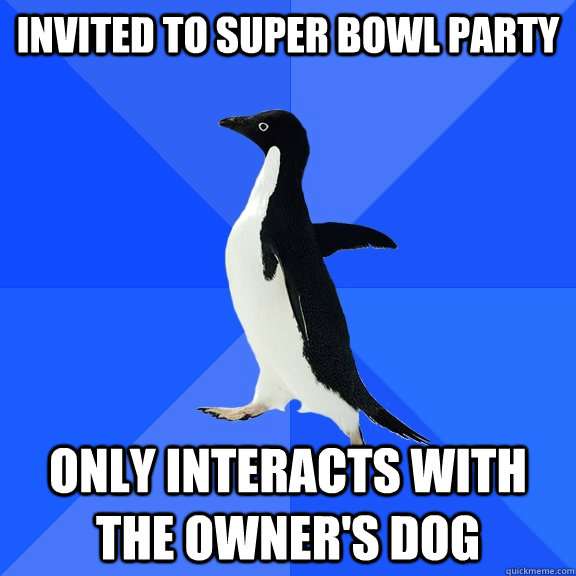 Invited to super bowl party Only interacts with the owner's dog - Invited to super bowl party Only interacts with the owner's dog  Socially Awkward Penguin