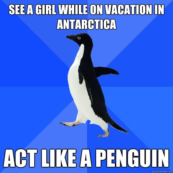 See a girl while on vacation in Antarctica  act like a penguin - See a girl while on vacation in Antarctica  act like a penguin  Socially Awkward Penguin
