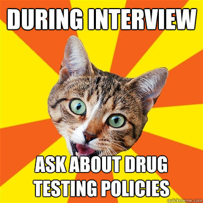 during interview ask about drug testing policies - during interview ask about drug testing policies  Bad Advice Cat