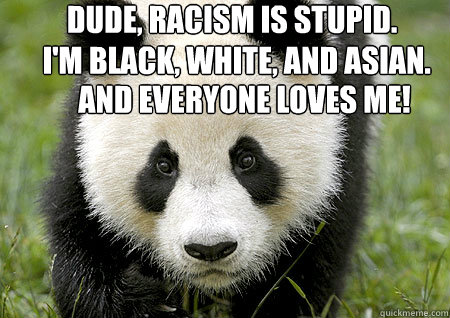 Dude, racism is stupid. I'm black, white, and Asian. And everyone loves me! - Dude, racism is stupid. I'm black, white, and Asian. And everyone loves me!  3 mile panda