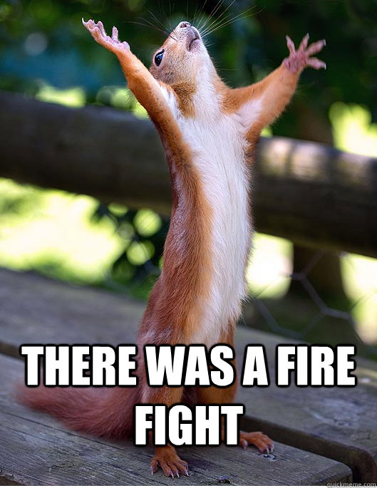 THERE WAS A FIRE FIGHT  Hallelujah Squirrel