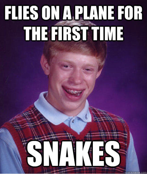Flies on a plane for the first time SNAKES - Flies on a plane for the first time SNAKES  Bad Luck Brian