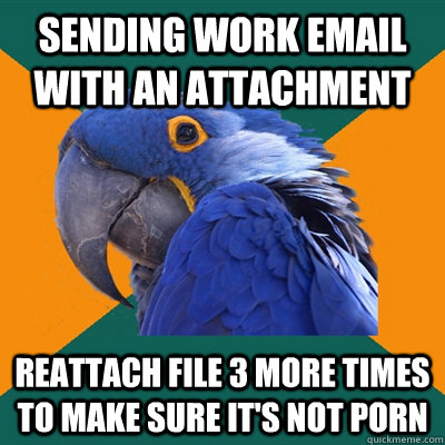Sending work email with an attachment reattach file 3 more times to make sure it's not porn - Sending work email with an attachment reattach file 3 more times to make sure it's not porn  Paranoid Parrot