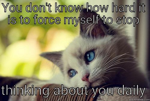 YOU DON'T KNOW HOW HARD IT IS TO FORCE MYSELF TO STOP  THINKING ABOUT YOU DAILY First World Problems Cat