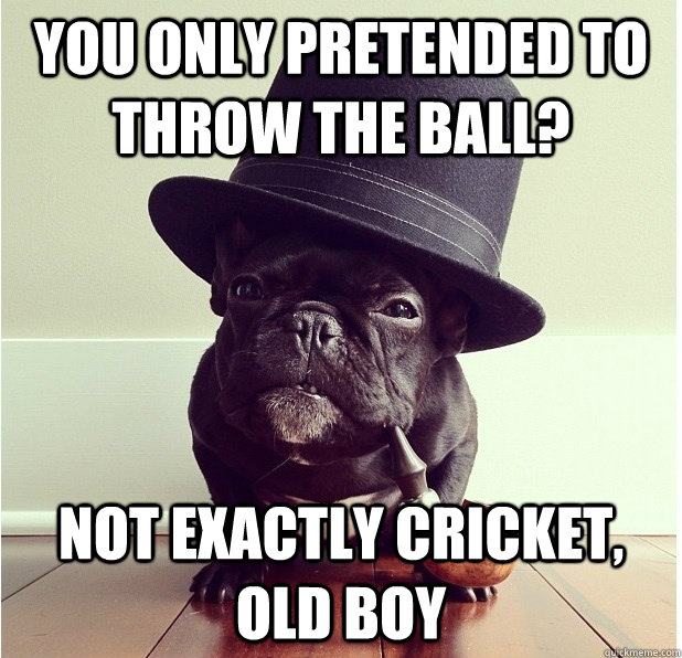 You only pretended to throw the ball? Not exactly cricket, old boy