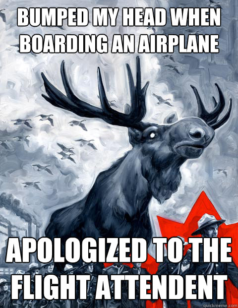 Bumped my head when boarding an airplane Apologized to the flight attendent - Bumped my head when boarding an airplane Apologized to the flight attendent  Canada Day
