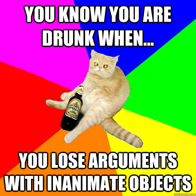 YOU KNOW YOU ARE DRUNK WHEN... YOU LOSE ARGUMENTS WITH INANIMATE OBJECTS