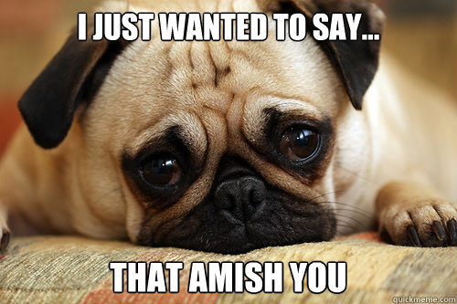 I Just Wanted To Say... That Amish You  sad pug