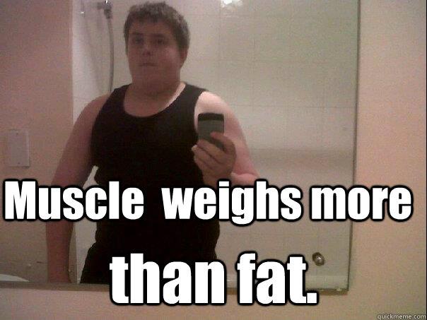 9102541daa475c1b8e5d2d68561e4c5362610803f7fe490a5468f59eed78e93c muscle weighs more than fat snowballl quickmeme,More Than That Meme