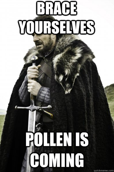 Brace Yourselves Pollen is coming - Brace Yourselves Pollen is coming  Misc