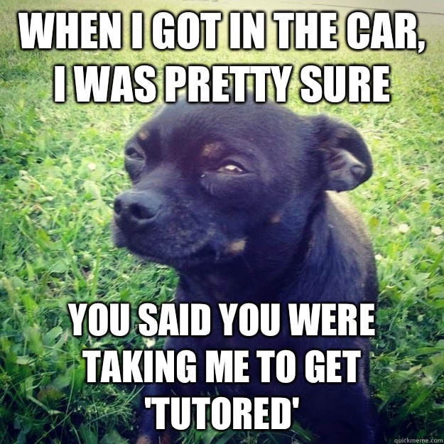 When I got in the car, I was pretty sure  You said you were taking me to get 'tutored' - When I got in the car, I was pretty sure  You said you were taking me to get 'tutored'  Skeptical Dog