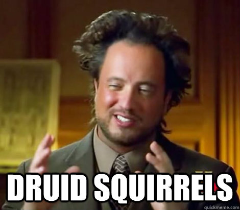 Druid squirrels