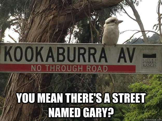 You mean there's a street named gary? -  You mean there's a street named gary?  Misc