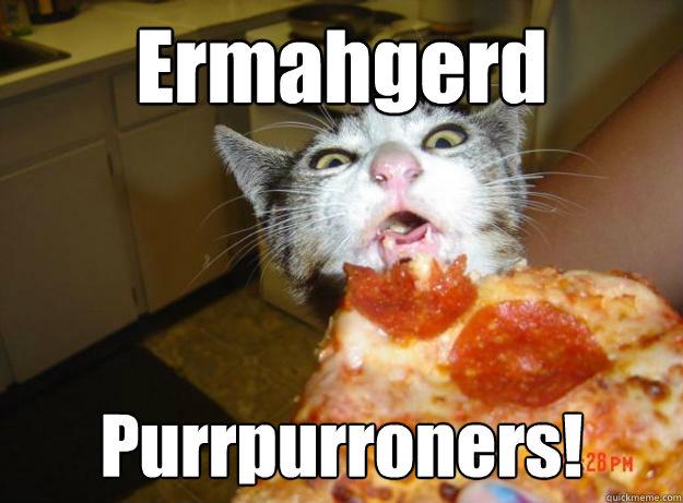 9169c78cf27eb7310a5083fe9d396058586f4e04d26c2ac7d40124723a4fa790 ermahgerd purrpurroners! pizza cat quickmeme,Pizza Cat Meme