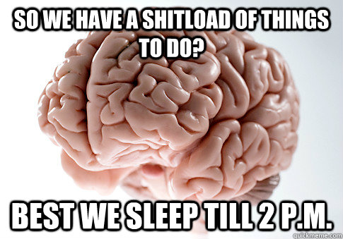 So we have a shitload of things to do? best we sleep till 2 p.m. - So we have a shitload of things to do? best we sleep till 2 p.m.  Scumbag Brain