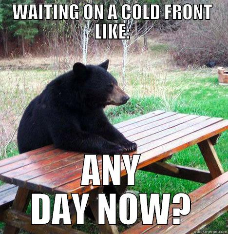 WAITING ON A COLD FRONT LIKE: ANY DAY NOW? waiting bear