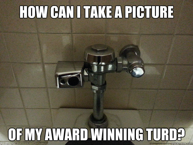 How can i take a picture of my award winning turd? - How can i take a picture of my award winning turd?  Auto Flush