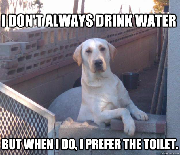 I don't always drink water but when I do, I prefer the toilet.