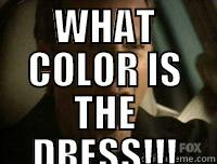 WHAT COLOR IS THE DRESS!!!  Misc