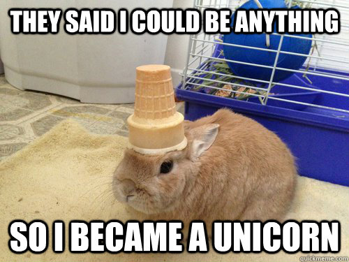 They said i could be anything so i became a unicorn  Unicorn