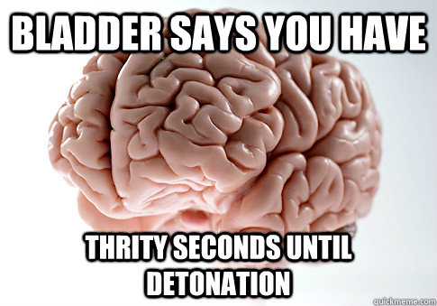 Bladder says you have Thrity seconds until detonation - Bladder says you have Thrity seconds until detonation  Scumbag Brain