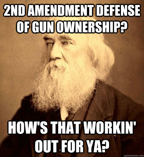 2nd amendment defense of gun ownership? how's that workin' out for ya?