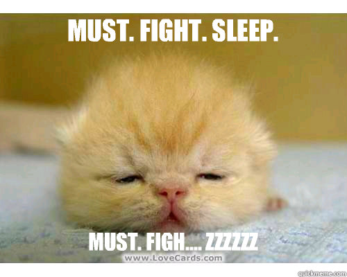 Must. Fight. Sleep. Must. Figh.... Zzzzzz