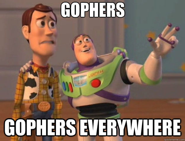 gophers gophers everywhere - gophers gophers everywhere  Toy Story