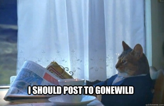I should post to gonewild - I should post to gonewild  Sophisticated Cat