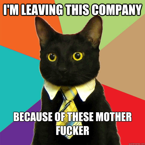 I'm leaving this company because of these mother fucker - I'm leaving this company because of these mother fucker  Business Cat