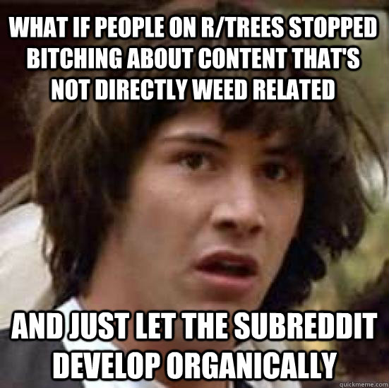 what if people on r/trees stopped bitching about content that's not directly weed related and just let the subreddit develop organically  - what if people on r/trees stopped bitching about content that's not directly weed related and just let the subreddit develop organically   conspiracy keanu