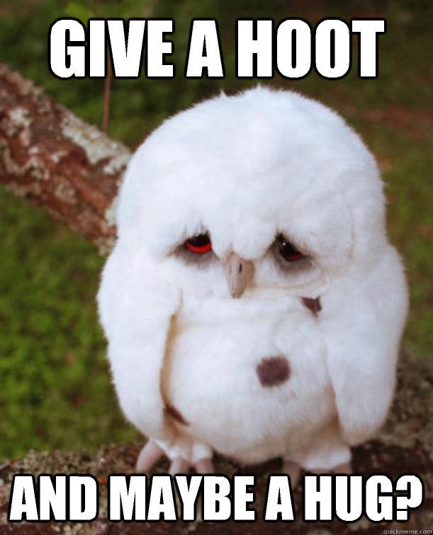 Give a hoot And maybe a hug?