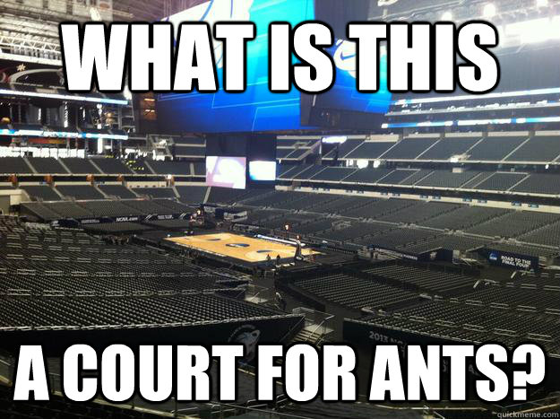 What is this a court for ants? - What is this a court for ants?  Sweet Sixteen Court - Arlington